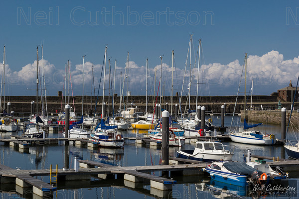 MG 0998-Edit-Edit 