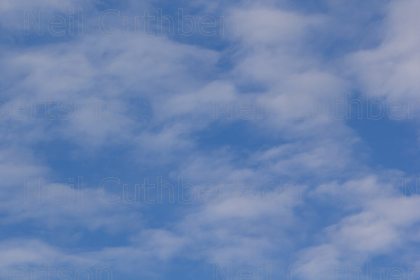 MG 5083 